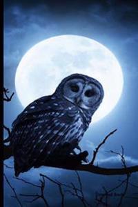 Journal Book: Owl Diaries, Lined Blank Journal Book, 6 X 9, 150 Pages, for School / Teacher / Office / Studen, Midnightt