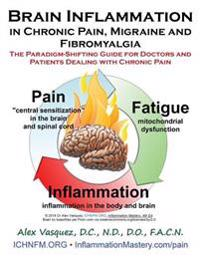 Brain Inflammation in Chronic Pain, Migraine and Fibromyalgia: The Paradigm-Shifting Guide for Doctors and Patients Dealing with Chronic Pain