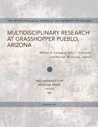 Multidisciplinary Research at Grasshopper Pueblo, Arizona
