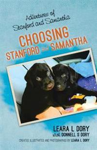 Adventures of Stanford and Samantha: Choosing Stanford and Samantha