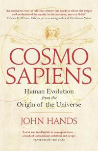 Cosmosapiens - human evolution from the origin of the universe