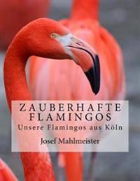 Zauberhafte Flamingos: Unsere Flamingos Aus Koln