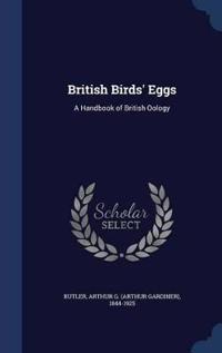 British Birds' Eggs