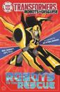 Transformers: Robots to the Rescue