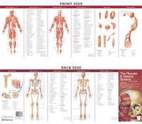 The Muscular & Skeletal Systems