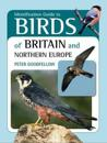 Identification Guide to Birds of Britain & Northern Europe