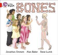 Bones Workbook