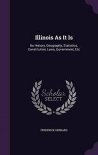Illinois as It Is