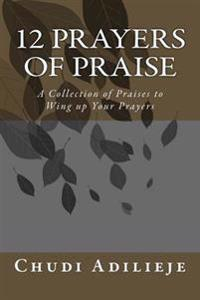 12 Prayers of Praise: A Collection of Praises to Wing Up Your Prayers