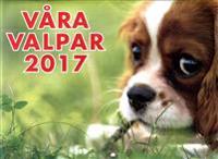 Almanacka - Våra valpar 2017