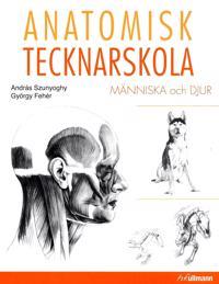 Anatomisk tecknarskola : människa och djur