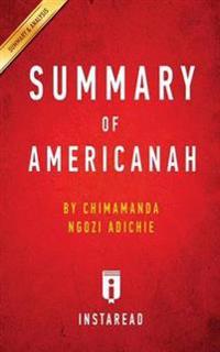 Summary of Americanah