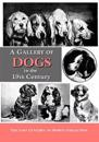 A Gallery of Dogs in the 19th Century: 350 Photographs & Illustrations from 50 Books & Magazines Published from 1858 to 1898