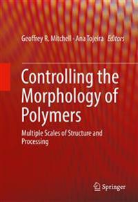 Controlling the Morphology of Polymers