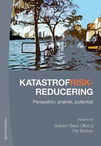 Katastrofriskreducering - Perspektiv, praktik, potential