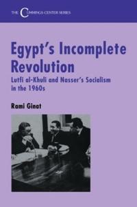 Egypt's Incomplete Revolution
