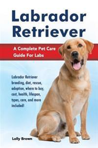 Labrador Retriever: Labrador Retriever Breeding, Diet, Rescue, Adoption, Where to Buy, Cost, Health, Lifespan, Types, Care, and More Inclu