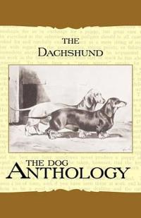 The Daschund - a Dog Anthology