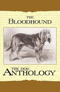 The Bloodhound - a Dog Anthology