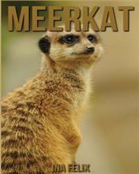 Meerkat: Children Book of Fun Facts & Amazing Photos on Animals in Nature - A Wonderful Meerkat Book for Kids Aged 3-7