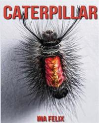 Caterpillar: Children Book of Fun Facts & Amazing Photos on Animals in Nature - A Wonderful Caterpillar Book for Kids Aged 3-7