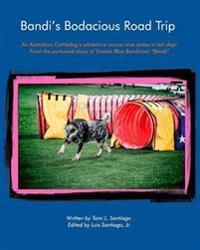 Bandi's Bodacious Road Trip