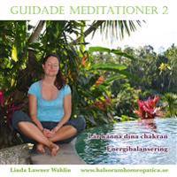 Guidade Meditationer 2