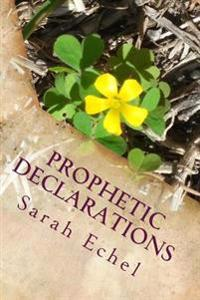 Prophetic Declarations: Heaven Released Through the Power of Your Words