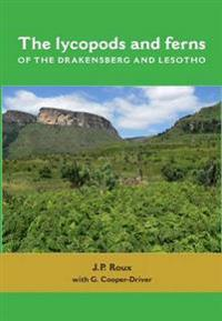 Lycopods and ferns of the drakensberg and lesotho