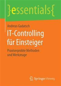 It-Controlling F r Einsteiger