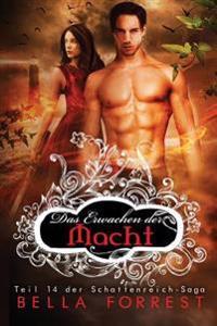 Das Schattenreich Der Vampire 14: Das Erwachen Der Macht