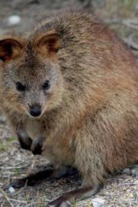 Quokka Journal: 150 Page Lined Notebook/Diary