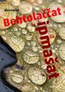 Behtolaccat ja ipmasat (nordsamiska)