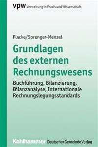 Grundlagen Des Externen Rechnungswesens: Buchfuhrung, Bilanzierung, Bilanzanalyse, Internationale Rechnungslegungsstandards
