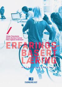 Erfaringsbasert læring - Frede Thorsheim, Stein Dankert Kolstø, Mari Ugland Andresen pdf epub