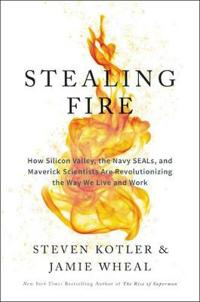 Stealing fire - how silicon valley, the navy seals, and maverick scientists