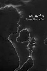 The Meshes
