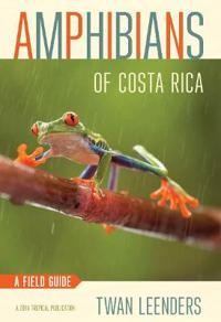 Amphibians of Costa Rica