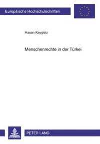 Menschenrechte in Der Tuerkei: Eine Analyse Der Beziehungen Zwischen Der Tuerkei Und Der Europaeischen Union Von 1990-2005