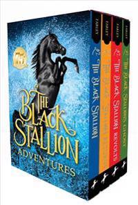 Black Stallion Adventures! (Boxed