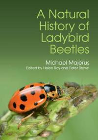 A Natural History of Ladybird Beetles