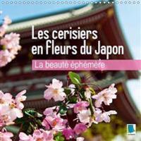 Beaute Ephemere - Les Cerisiers en Fleurs du Japon 2017