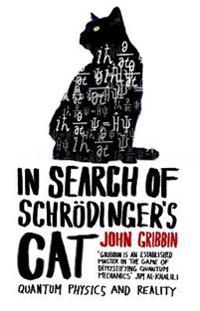 In search of schrodingers cat