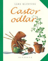 Castor odlar