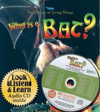 What Is a Bat?