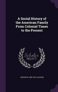 A Social History of the American Family from Colonial Times to the Present