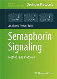 Semaphorin Signaling