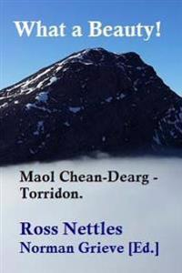 What a Beauty!: Maol Chean-Dearg - Torridon.