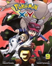 Pokémon X-Y, Vol. 9