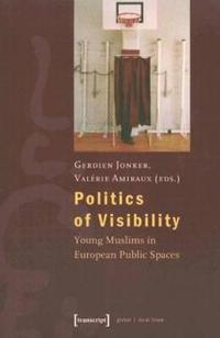 Politics of Visibility